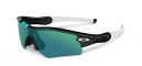 OAKLEY RADAR® PATH™ 30 YEARS SPORT SPECIAL EDITION 26-268